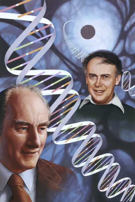 """British scientist Francis Crick, left, and his American colleague James Watson revolutionized the field of genetics when they discovered the double-helix structure of deoxyribonucleic acid (DNA), the genetic blueprint for all living organisms. And then Watson distinguished himself by saying things like """"some anti-Semitism is justified"""" and """"our social policies are based on the fact that [Africans'] intelligence is the same as ours—whereas all the testing says not really."""" Watson auctioned his Nobel Prize for $4.1 million. Illustration by Ned M. Seidler, National Geographic"""