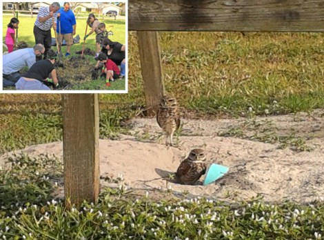 Elementary School at Griffin Elementary in Cooper City, FL working with Audubon to build nests for the endangered Burrowing Owl.