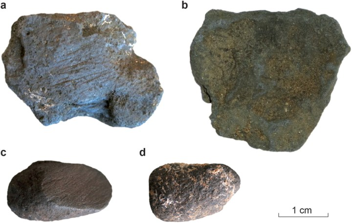 "Manganese dioxide is abundant in the limestone cliffs of Dordogne. These examples from Pech-de-l'Azé I contrast unmodified blocs (b,d) with those featuring abrasion marks (a,c). Photograph from ""Selection and Use of Manganese Dioxide by Neanderthals,"" Scientific Reports 6, Article number: 22159 (2016)"