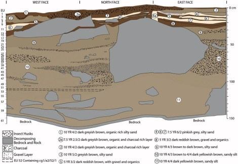 """The flake was discovered in the same sediment layer, identified by dotted lines, as a deposit of gravel and charcoal. Illustration from """"World's earliest ground-edge axe production coincides with human colonisation of Australia."""" Peter Hiscock, Sue O'Connor, Jane Balme, Tim Maloney. Australian Archaeology Vol. 82, Iss. 1, 2016"""