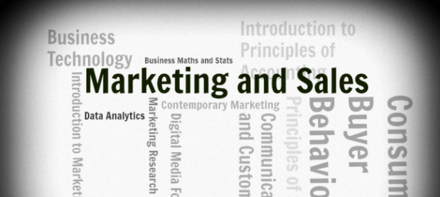Why choose Marketing and Sales at IT Sligo?