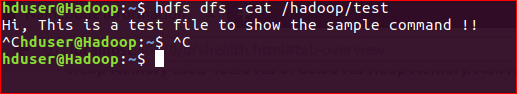 HDFS file test