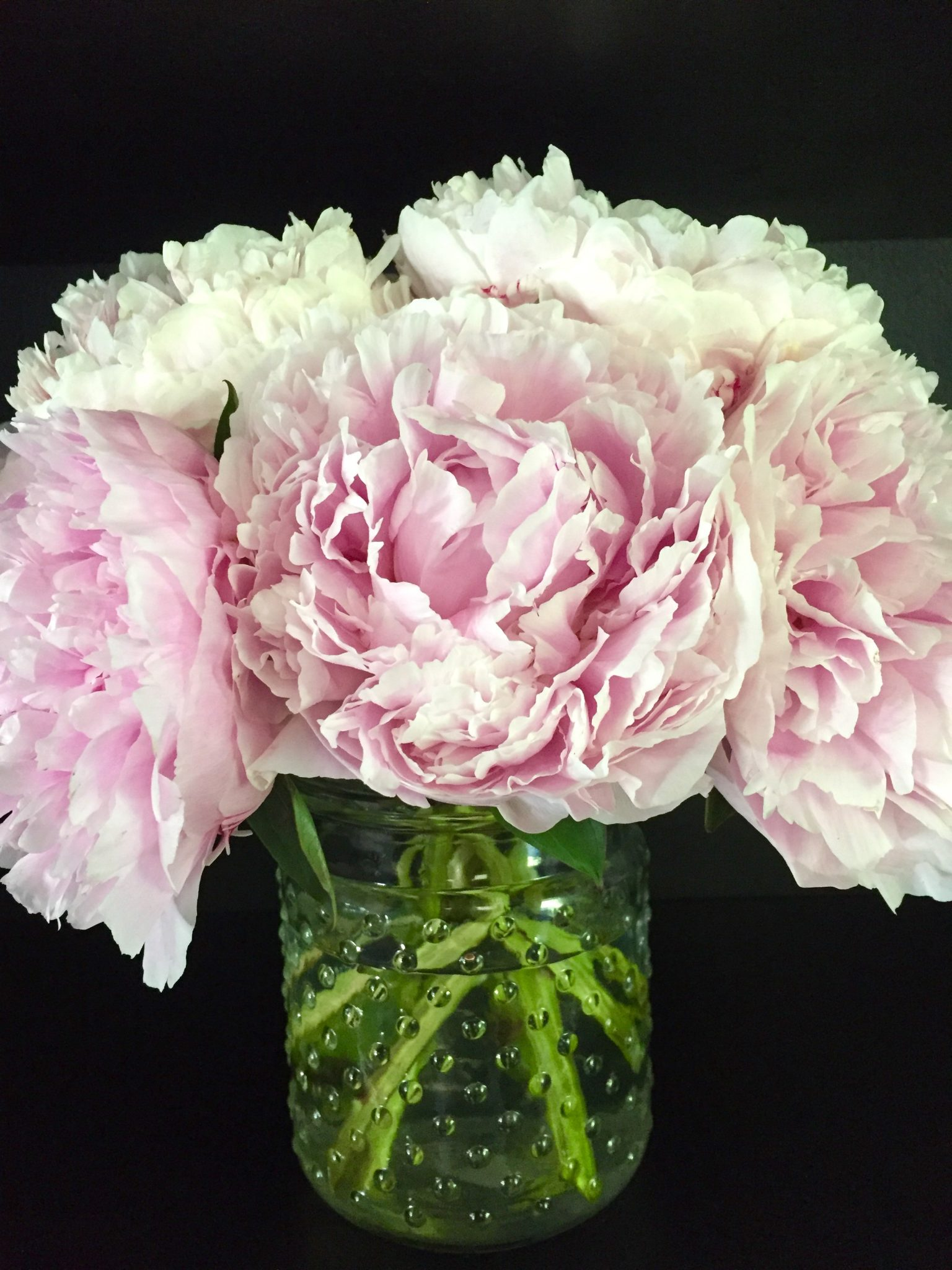 South pole adventurer, the rise of the agribots, homer's literary legacy. How to care for your cut peonies - Effortless Style Blog