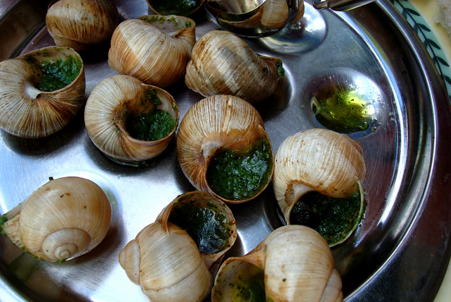 Escargot Flickr- Fabio Sola Penna