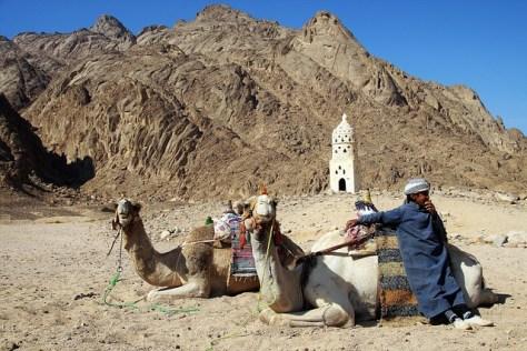 desert-1880400_640