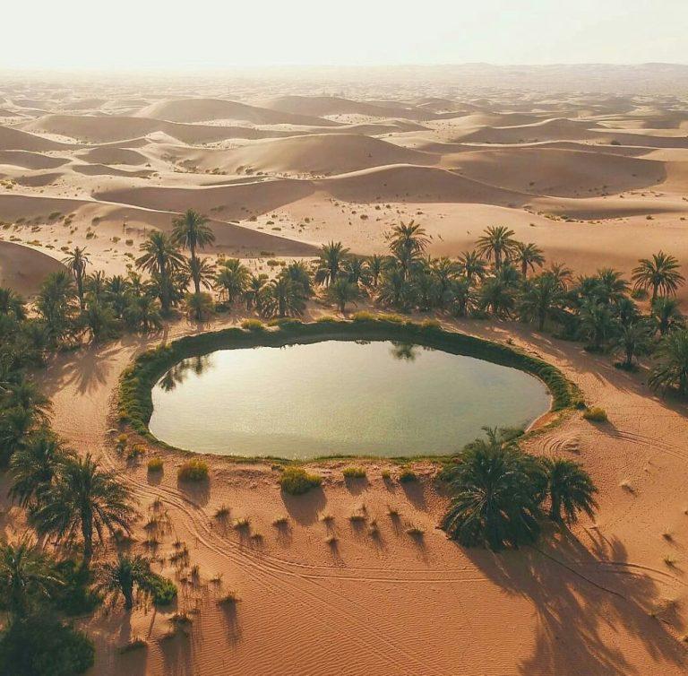 Oasis, Abu Dhabi,United Arab Emirates