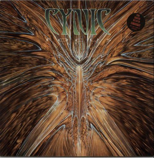 Cynic-Focus---1st-629607