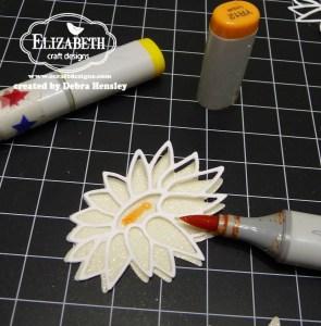 ECD daisy color 1a P1060566
