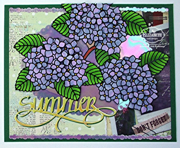 Summer Hydrangeas A