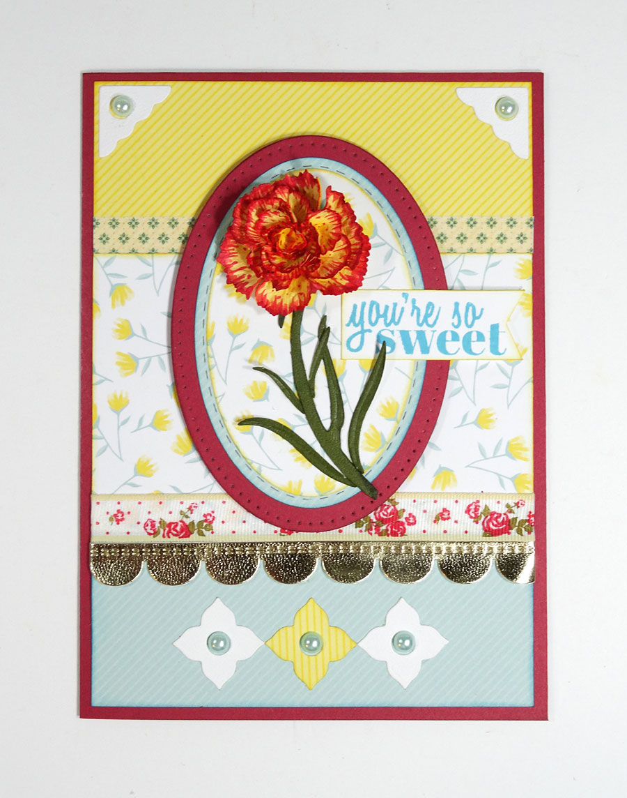Carnation-Thank-You-Annette-Green-12