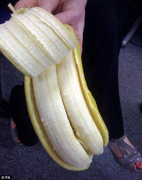 8. Existió una banana doble.