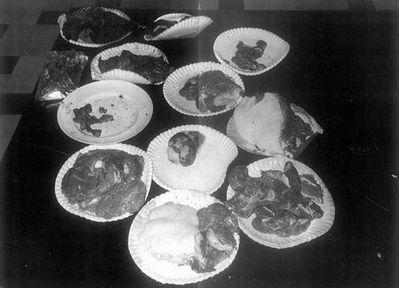 Participó invitado en programas presentando sus platos, enseñándoles a varios chefs como cocinar carne humana