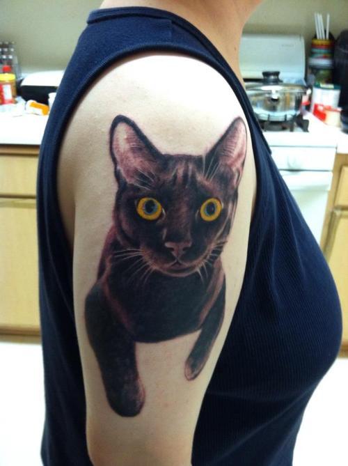 15. Gato negro