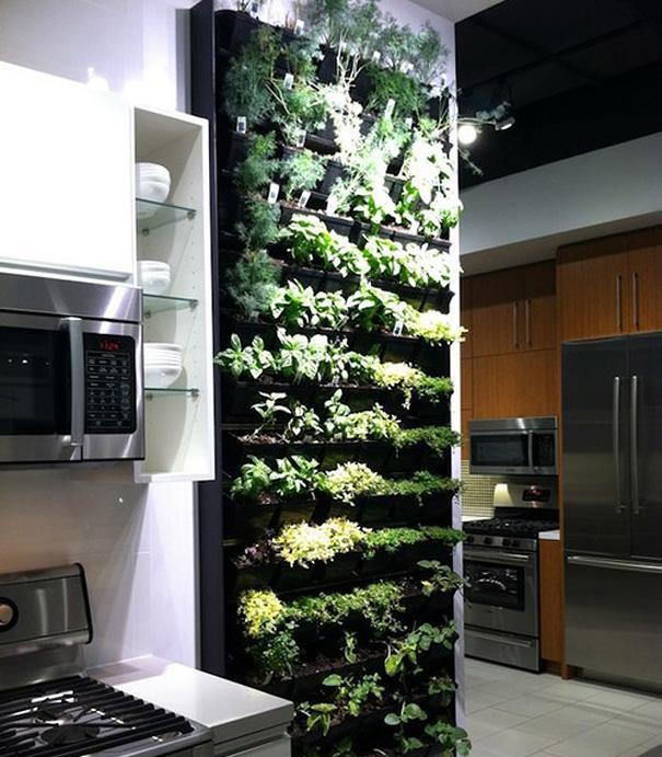 11. Jardín de hierbas vertical para la cocina