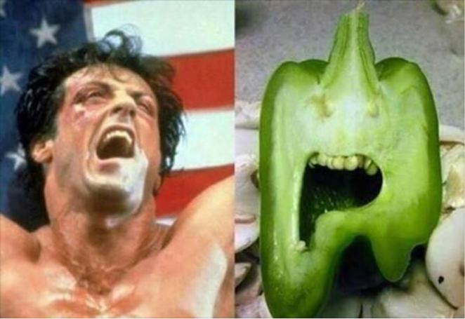 Sylvester Stallone And Paprika
