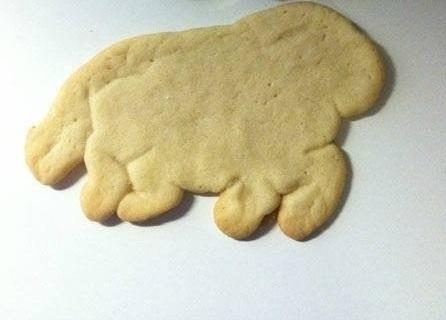 Parece que sí, o la galletita de caballo se comió a las demás