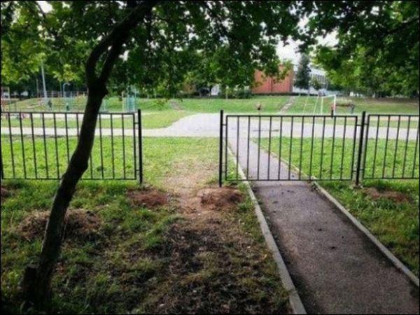 18. -Que la entrada quede en el camino de cemento, justito por favor. -Sí, sí. ¿Qué dijo este tipo? -Que la puerta quede justo en el pastito.