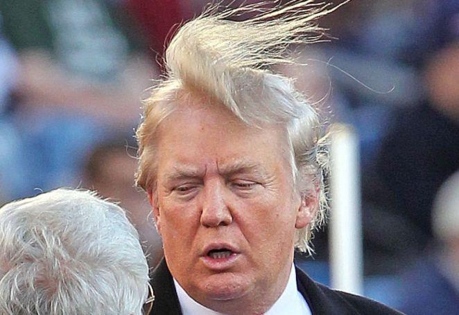 Resultado de imagen para donald trump hair