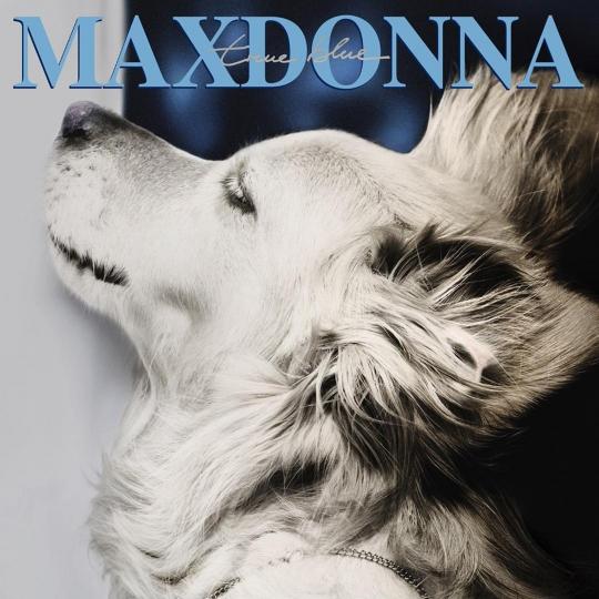 """""""MAXDONNA"""" © Vincent Flouret"""