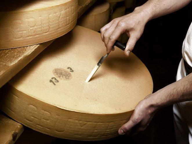 Resultado de imagen para horma de queso gigante