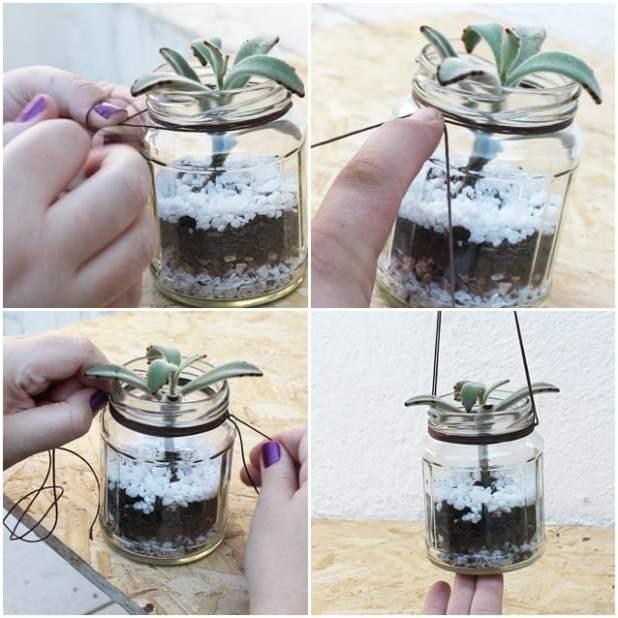 Como plantar suculentas vaso pendente