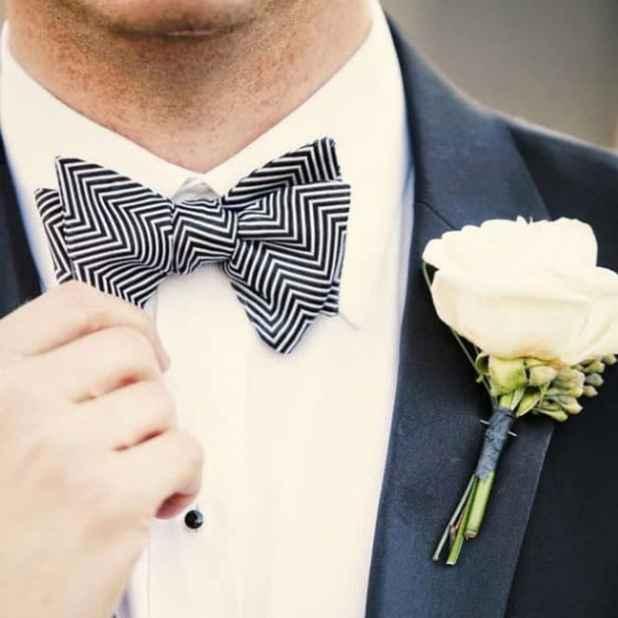 gravataborboleta2
