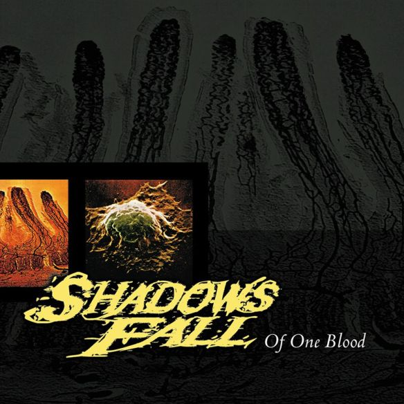 Shadows Fall - Cover