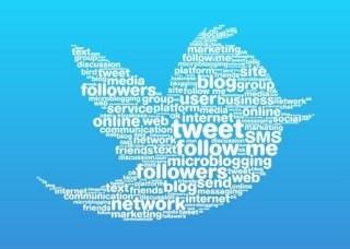 twitter_word_bird