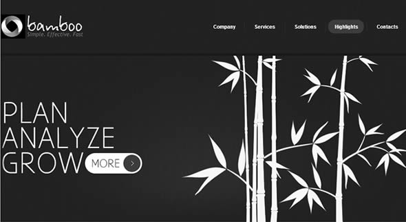 Bamboo Business Website