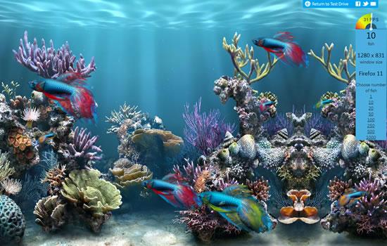 FishIETank