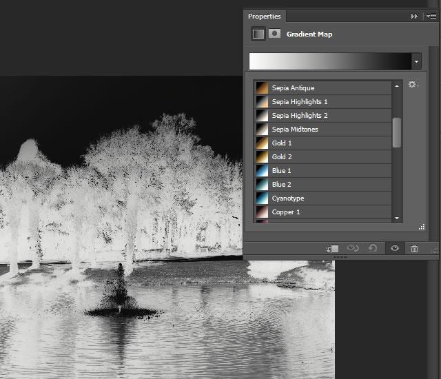 Photographic ToningTechniques