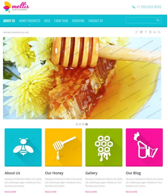 Template 46562 - Mellis Honey Responsive Website Template
