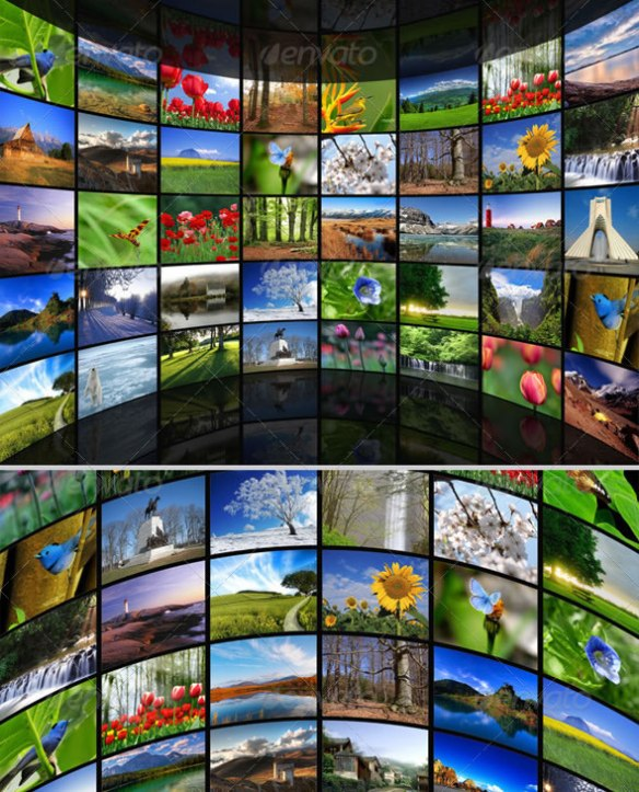 Circular Wall Photo Gallery