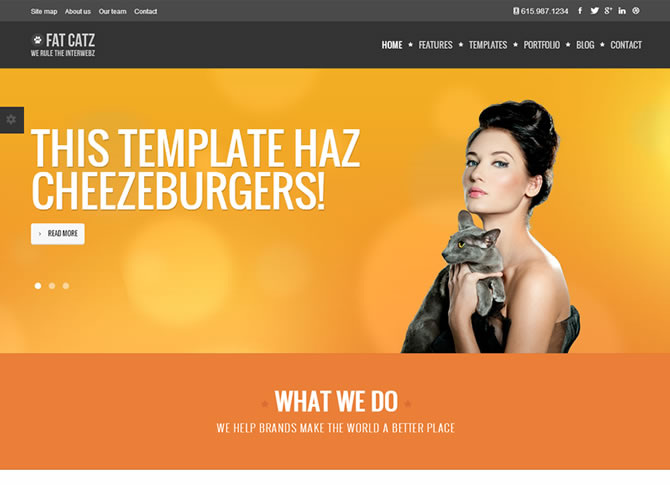 Fat Catz | Bootstrap3 Website Template