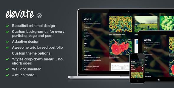 http://themeforest.net/item/elevate-background-oriented-portfolio-wp-theme/2907629?ref=entheosweb
