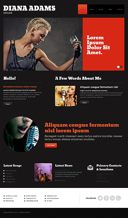 Template 47939 - Singer Personal Responsive WordPress Theme with Slider, Gallery and Blog
