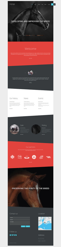 Template 57835 - Horse Breeder Responsive Joomla Template with Gallery and Blog
