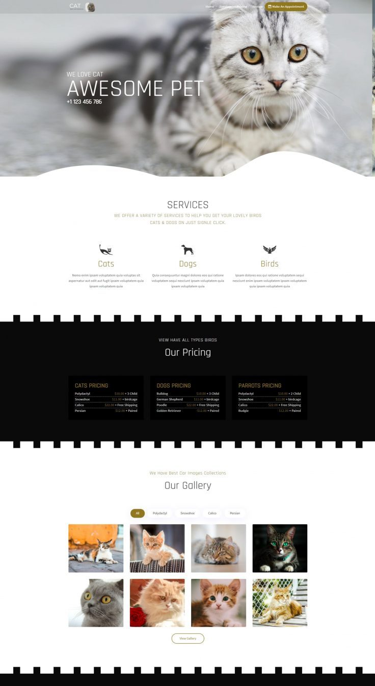 Cato Responsive Landing Page Template