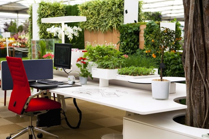 Eco Friendly Office