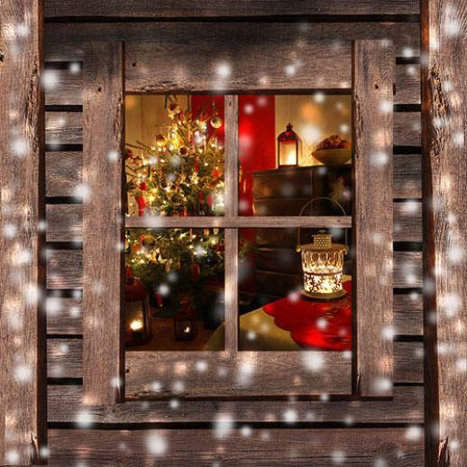 Защита на дома по Коледа