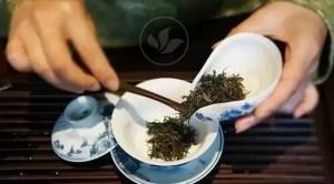 Chez Mo l'esprit du thé
