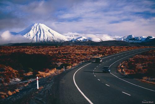 Ethan Holmes new road NZ