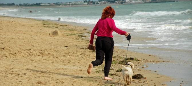 Gaaf voor Kinderen test hondvriendelijke camping les Ecureuils. Takkie mag mee!