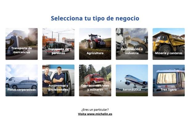 Michelin Pro