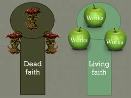 Faith is the root of salvation. Works is the fruit.