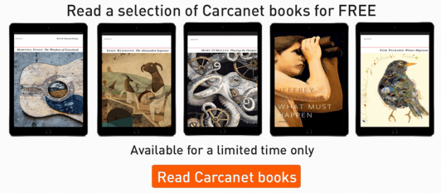 2carcanet-books-banner-ad_720