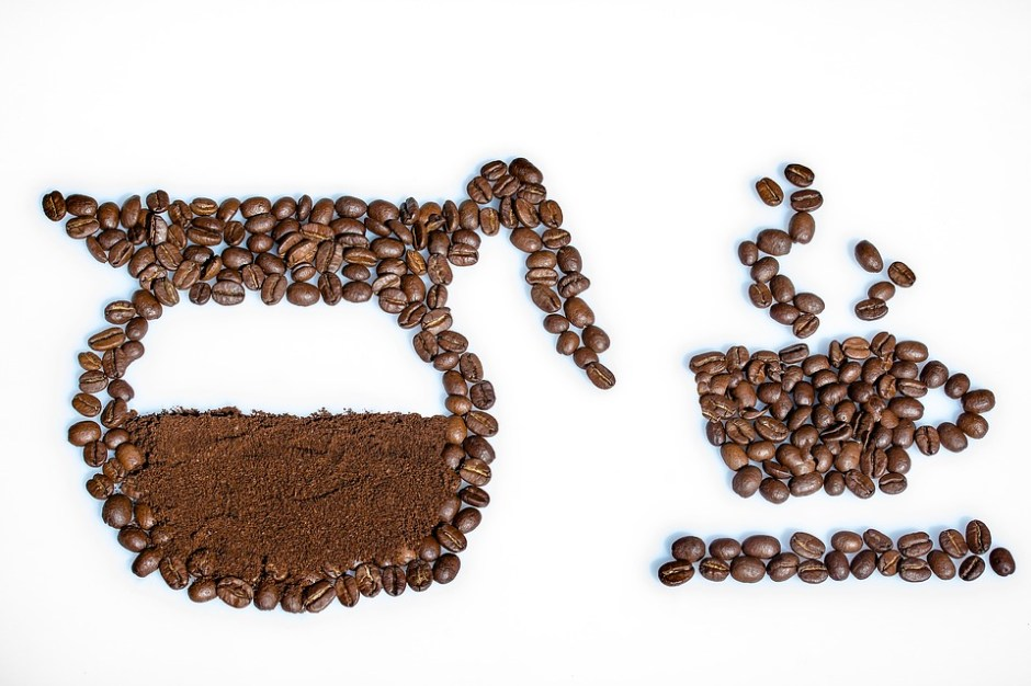 The Life of a Coffee Bean