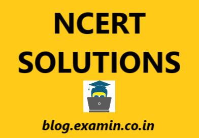 NCERT Solutions CBSE