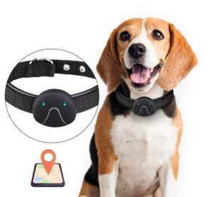 GPS Tracker for dogs | A Blog by Susan Bulanda