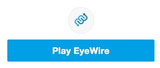 play eyewire a game to map the brain